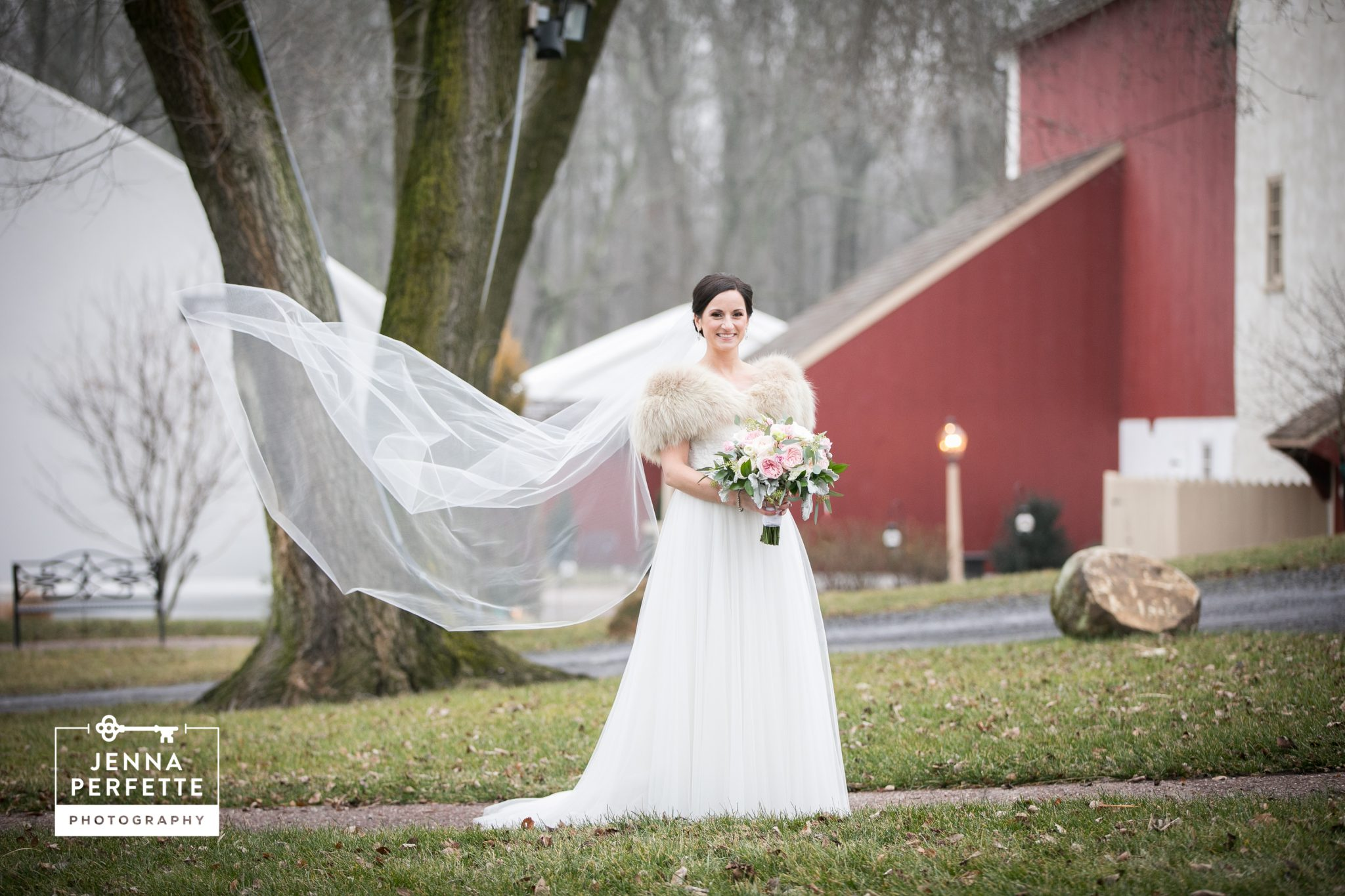 Brandywine Manor Professional Wedding Portraits