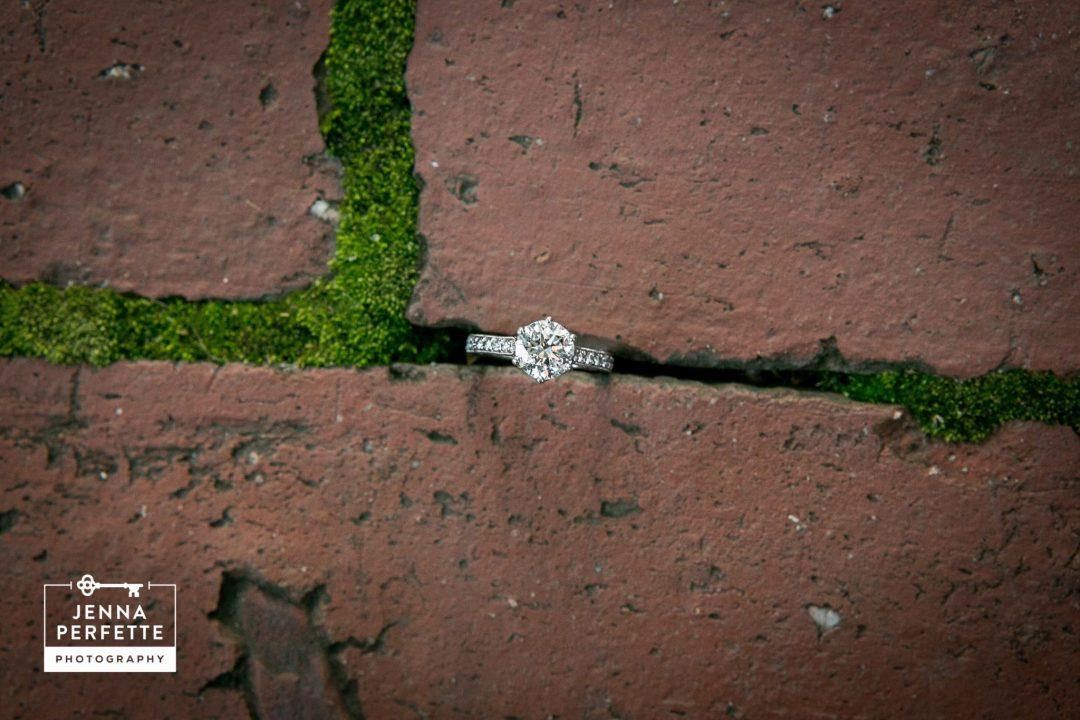 new hope engagement photography nj photo shoot-1