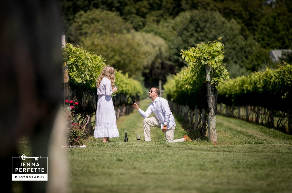 John & Taylor – New Jersey Vineyard Proposal Photography