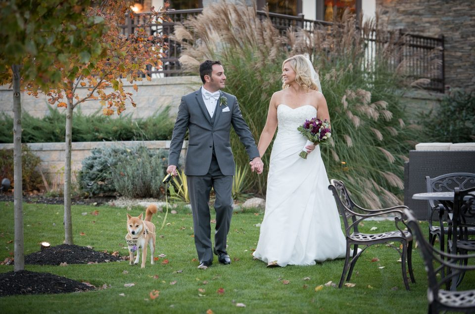 Fur-Better or Fur-Worse: Including Your Pet in Your Wedding